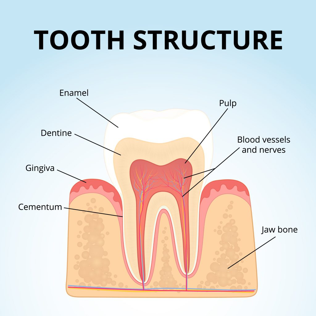 """Blog 1: """"how to restore tooth enamel"""""""